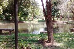 Pesque e Pague Sarandy